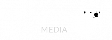 Polaris-logo_transparent